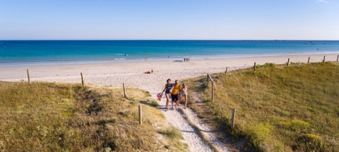 The Most Beautiful Campsites Direct Access To The Beach